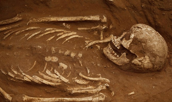 Skeleton excavated at ancient Philistine cemetery in southern Israel